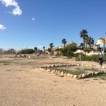 THE WEEKLY NEWS FROM ORIHUELA