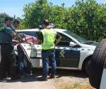FOUR MEN ARRESTED IN CALLOSA FOR THEFT OF CITRUS FRUIT